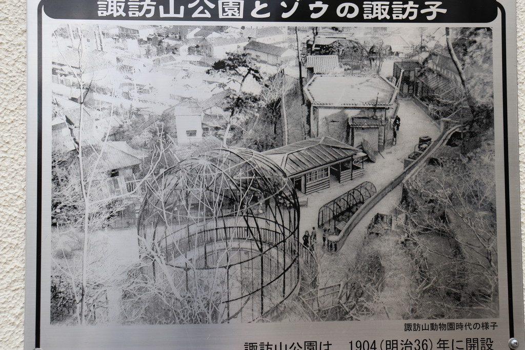 神戸市立諏訪山動物園