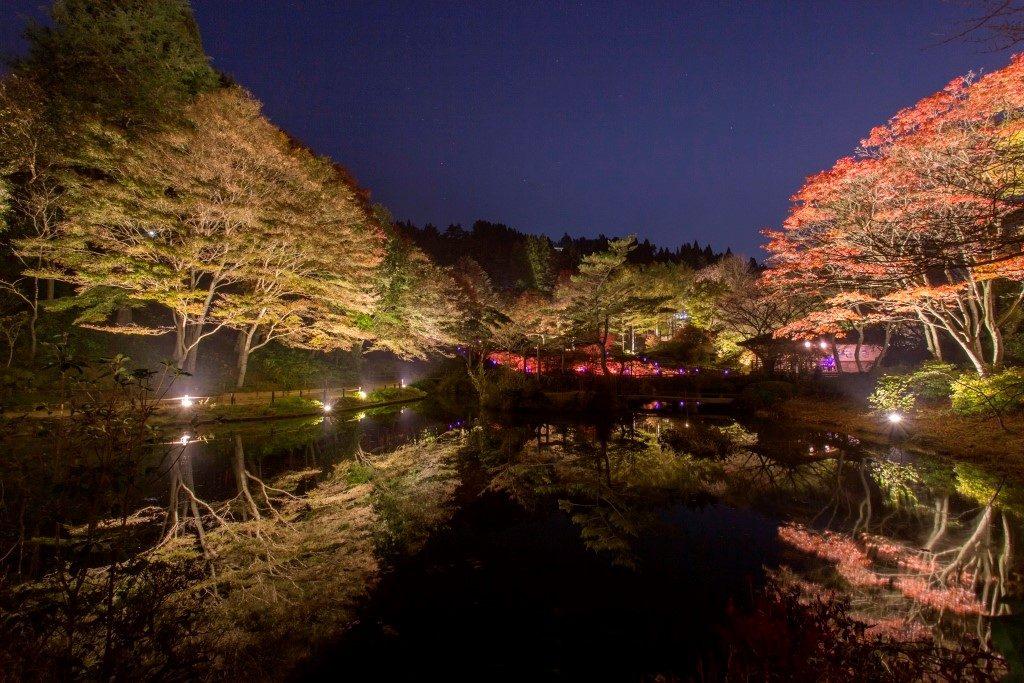 ライトアップされた紅葉とアートを楽しむ 六甲高山植物園
